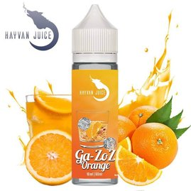 Hayvan Juice - Ga Zoz Orange - 10ml Aroma (Longfill)