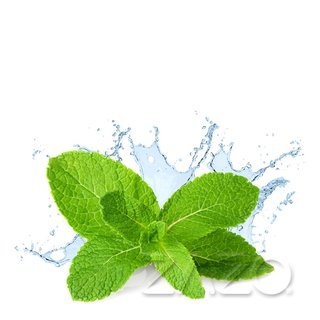 Zazo - Fresh Mint - 10ml Liquid